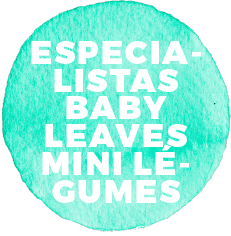 Especialistas em baby leaves e mini legumes