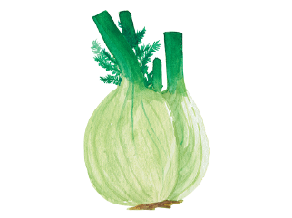 The Fennel